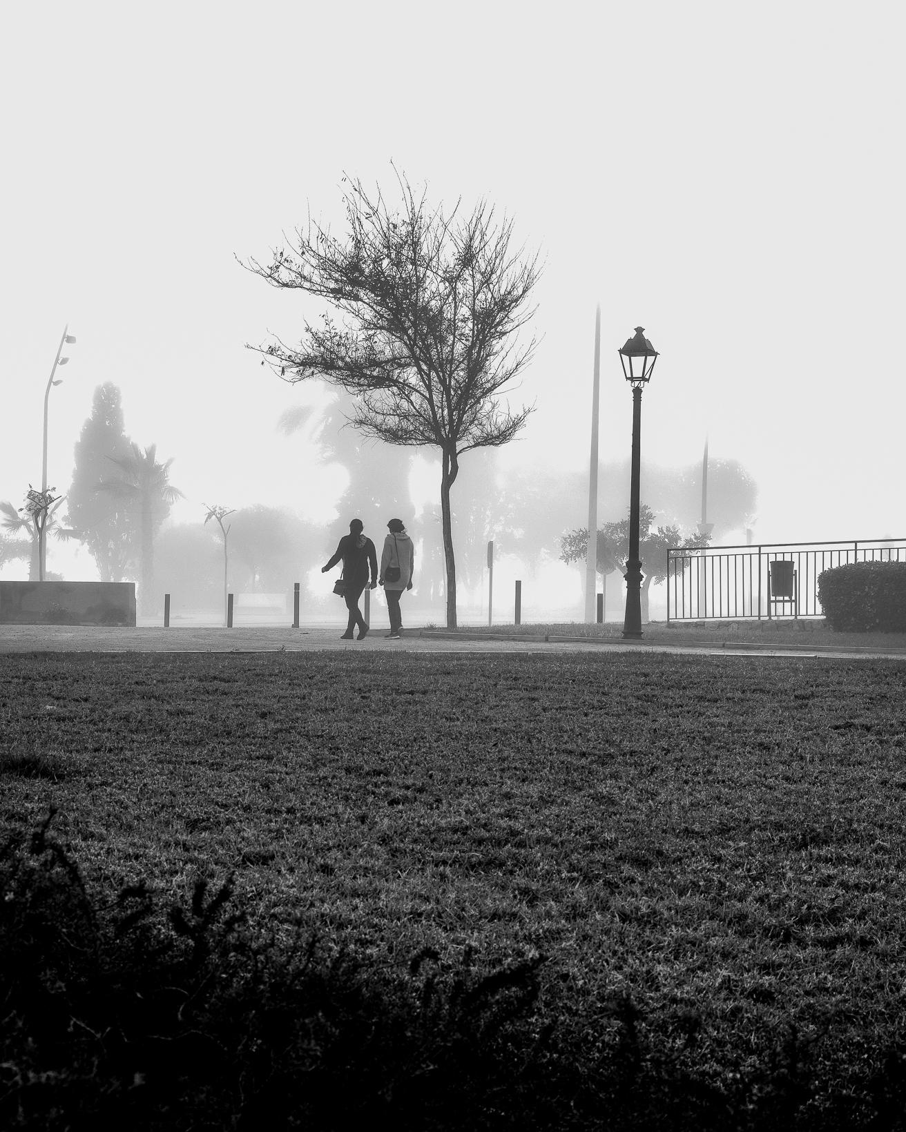 Elles caminen soles.