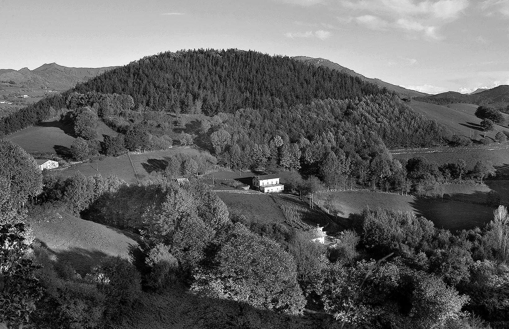 La casa blanca del bosque